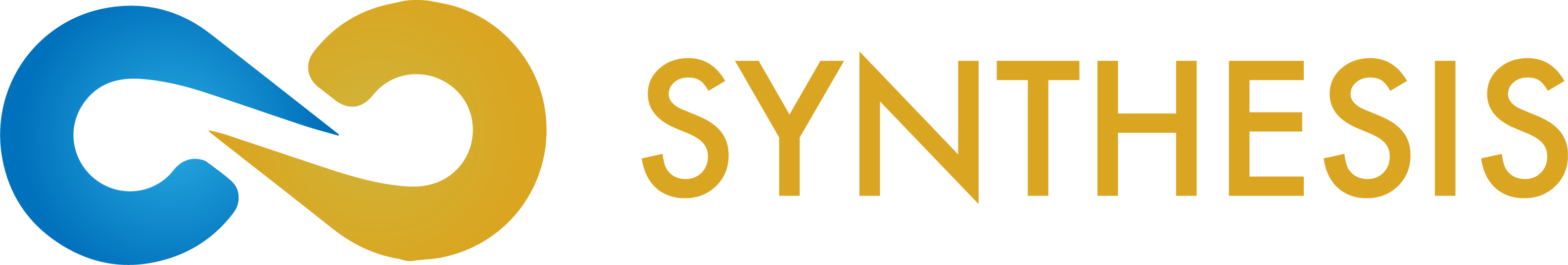 Synthesis Group